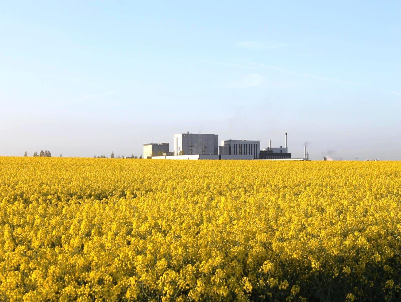 bio carburant huile colza vegetal energie verte rse environnement ecoresponsable empreinte carbone co2